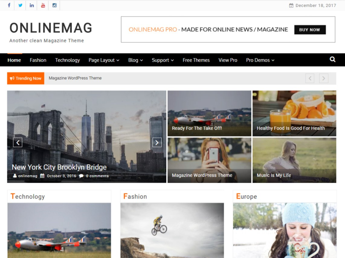 OnlineMag — Free WordPress Themes