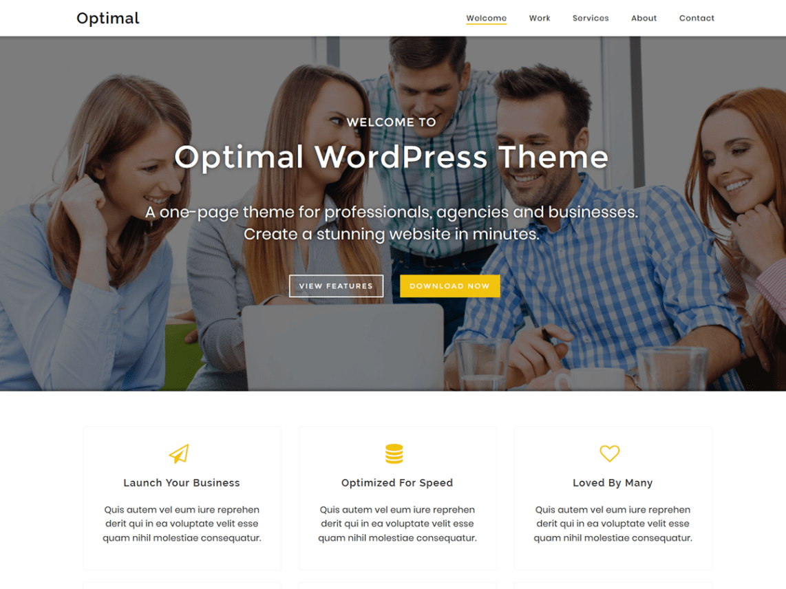 Optimal WordPress child theme by Themely