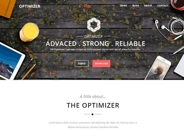 Optimizer Free Theme