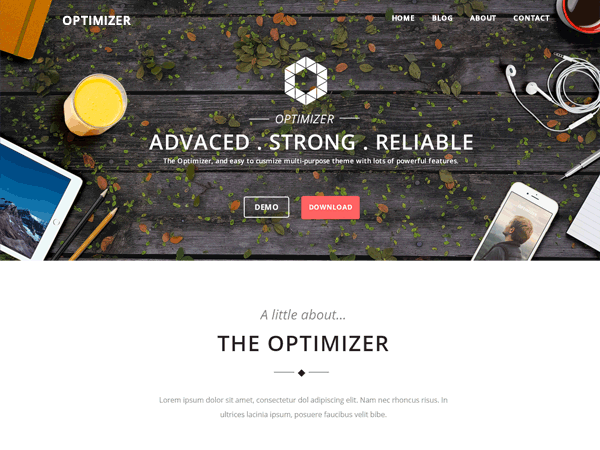 screenshot of optimizer wordpress theme