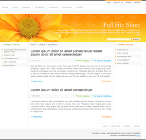 Orange Flower free wordpress theme