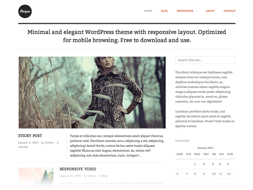 Origin free wordpress theme