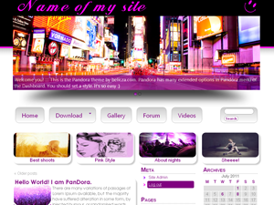 pandora free wordpress theme