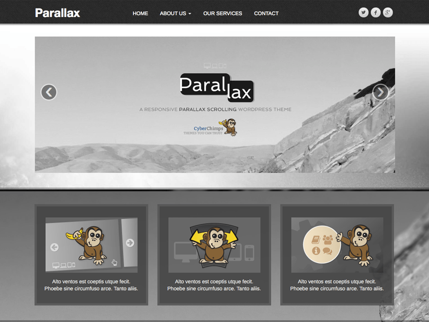 Parallax — Free WordPress Themes