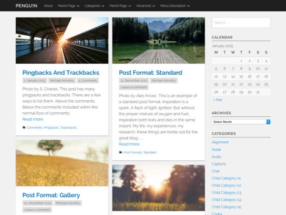 Penguin wordpress theme