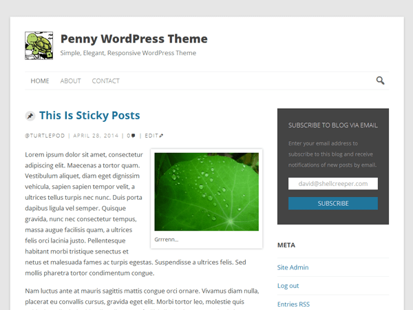Penny free wordpress theme