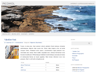 picolight free wordpress theme
