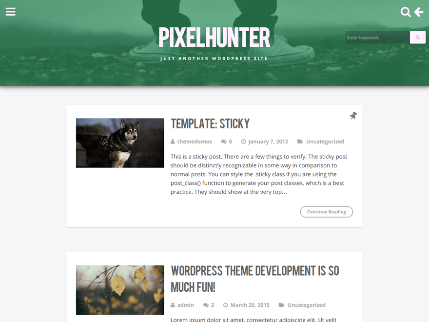 PixelHunter free wordpress theme