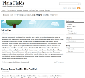 Plain Fields wordpress theme
