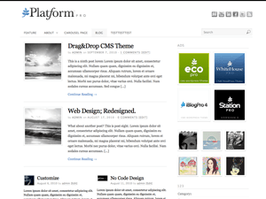 Platform free wordpress theme