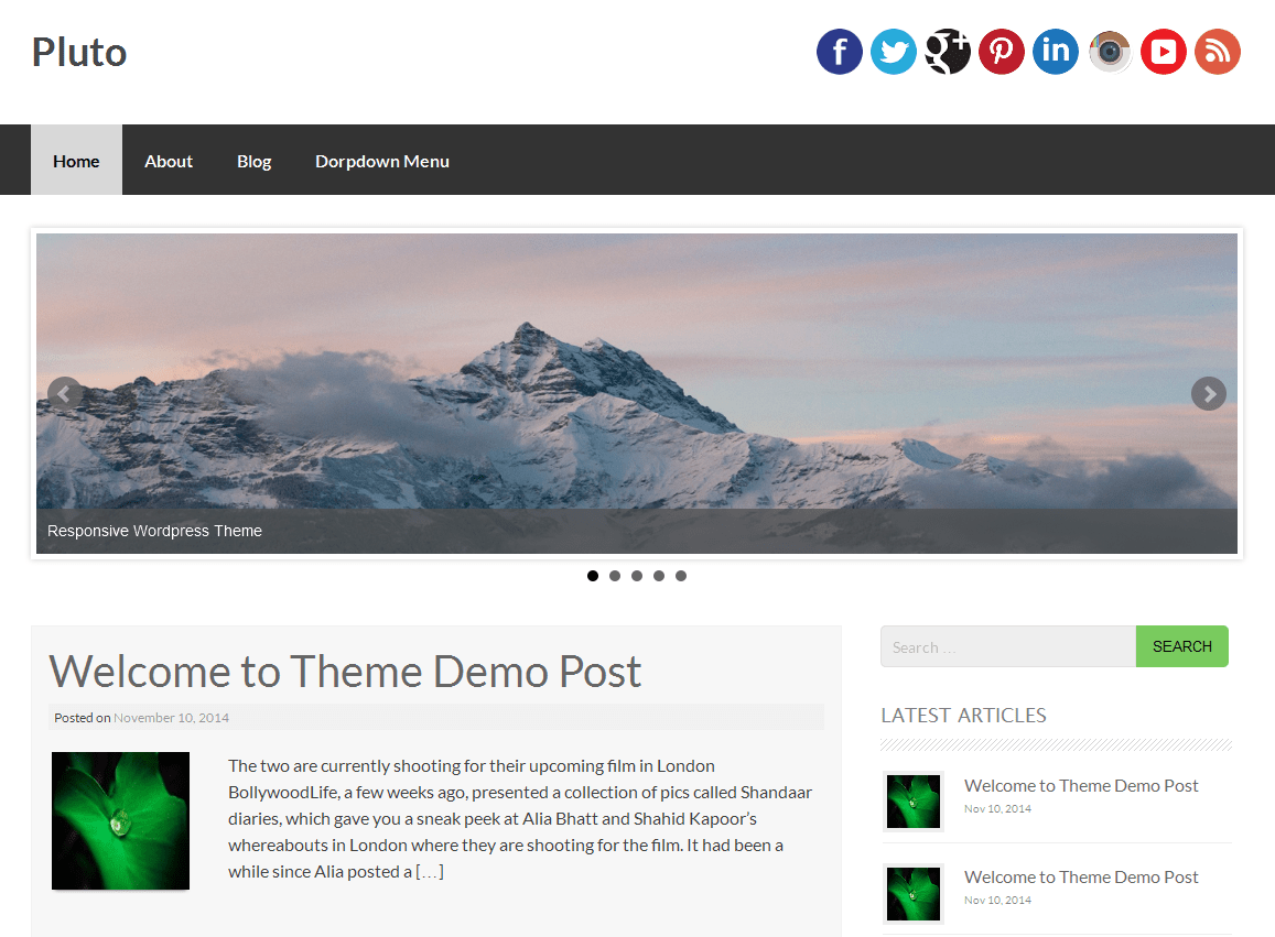 Pluto free wordpress theme