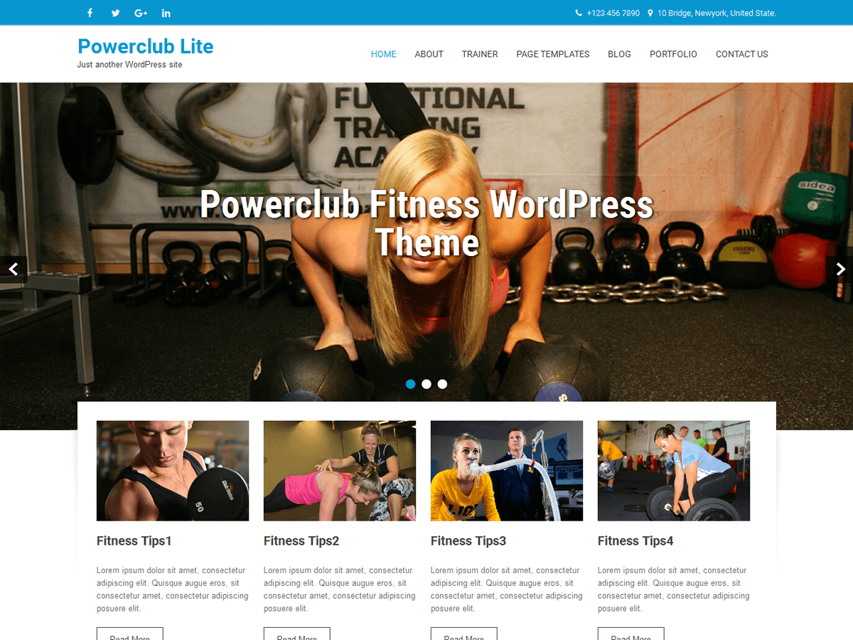 Custom Background Free WordPress Themes