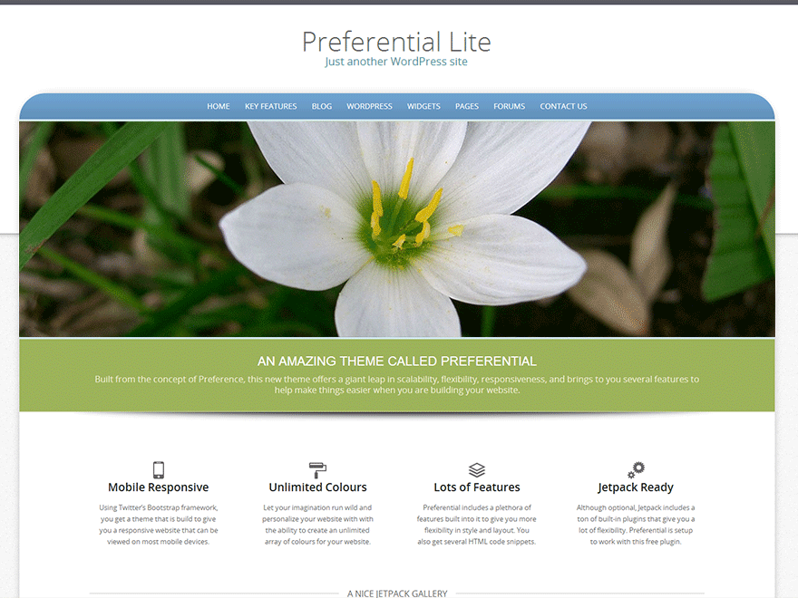 Preferential Lite free wordpress theme