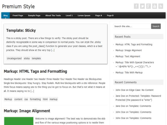 Premium Style wordpress theme