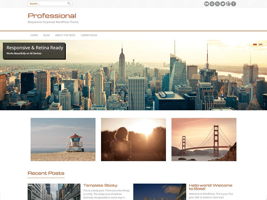 PROFESSIONAL Business, Portfolio, Biographie, Blog