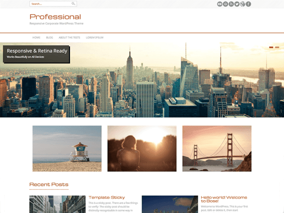 Professional wordpress theme
