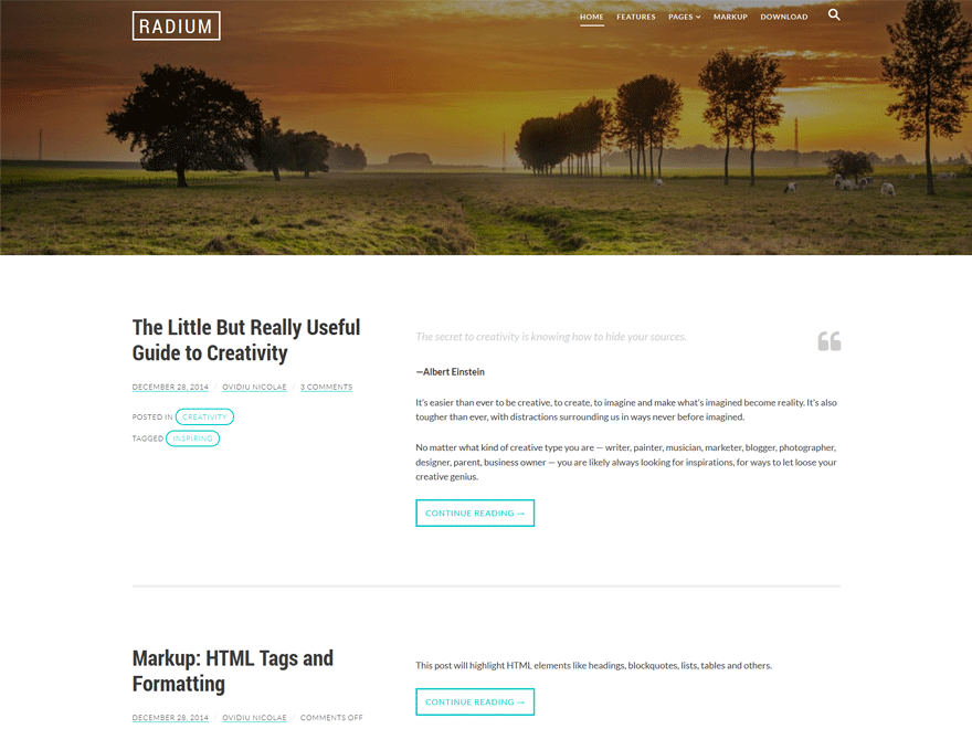 Radium free wordpress theme