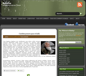 Rakalap free wordpress theme