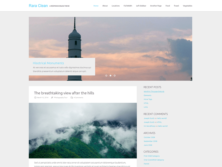 Rara Clean free wordpress theme