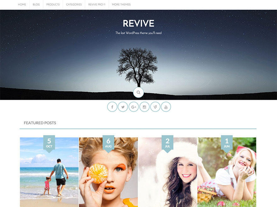 Revive free wordpress theme