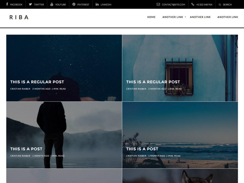 RIBA-LITE Portfolio, Biographie, Blog