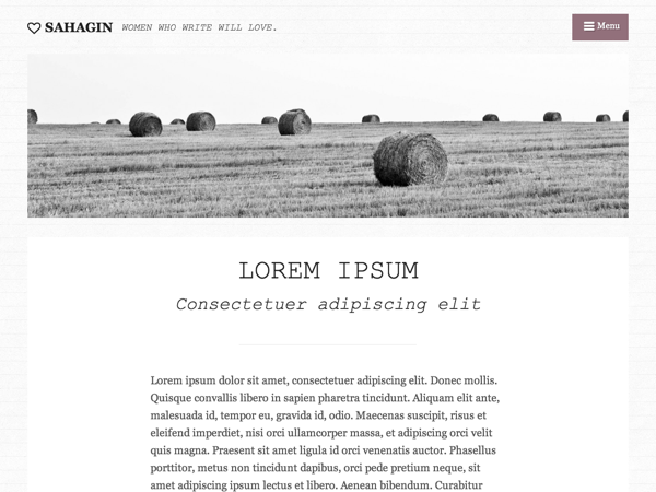 Sahagin free wordpress theme