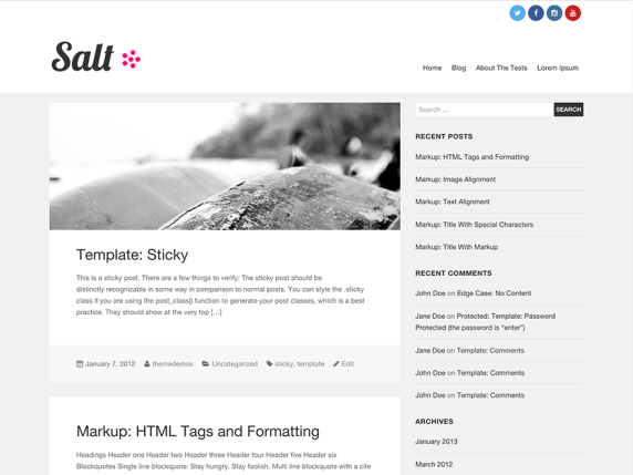 Salt wordpress theme