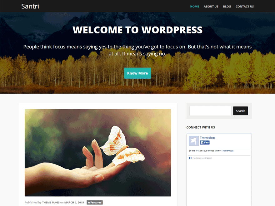Santri free wordpress theme