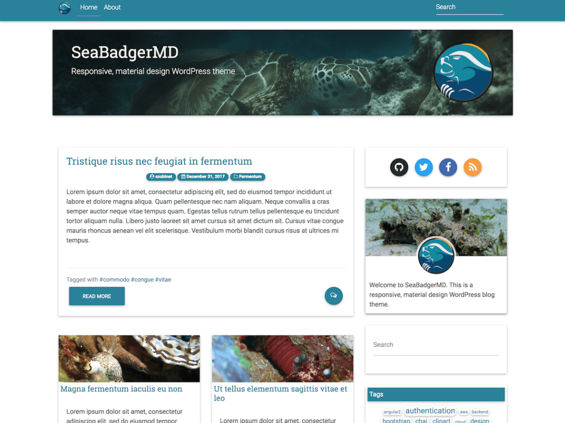 SeaBadgerMD Theme Free Download