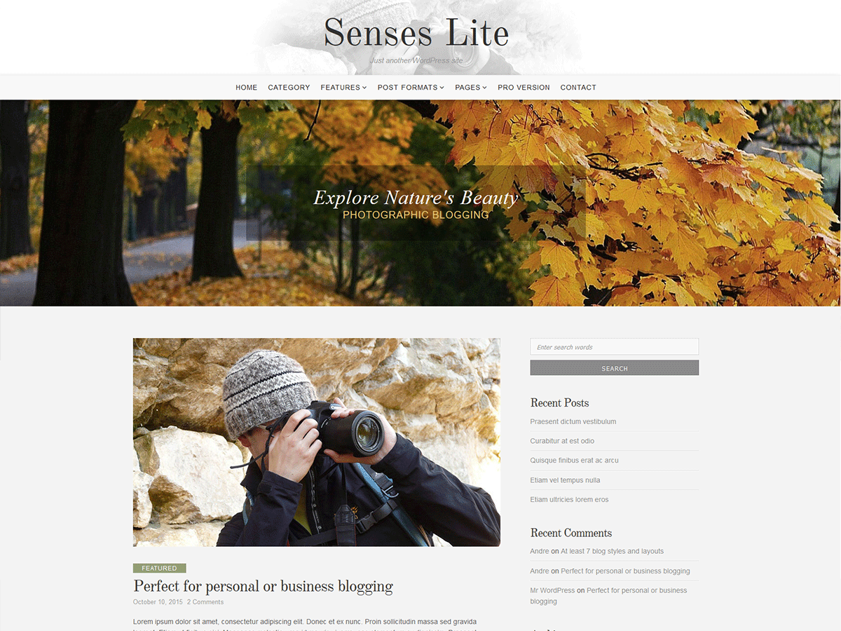 Senses Lite free wordpress theme