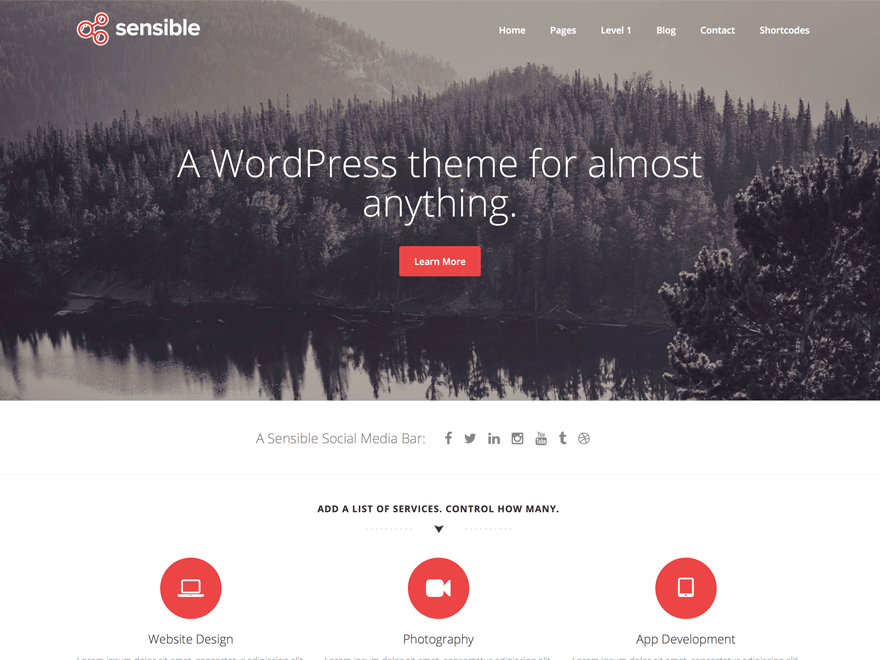 Sensible WP free wordpress theme