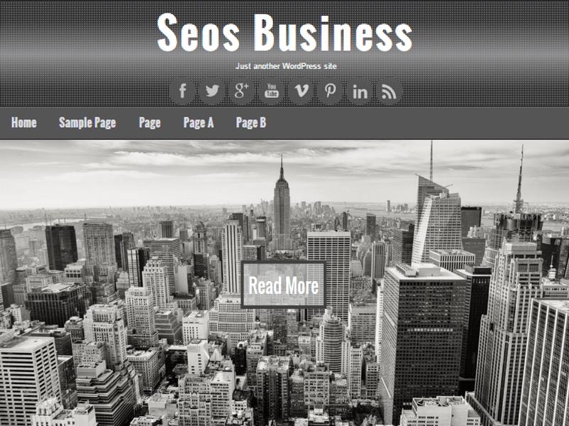 Seos Business free wordpress theme
