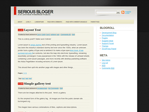 Serious Blogger free wordpress theme