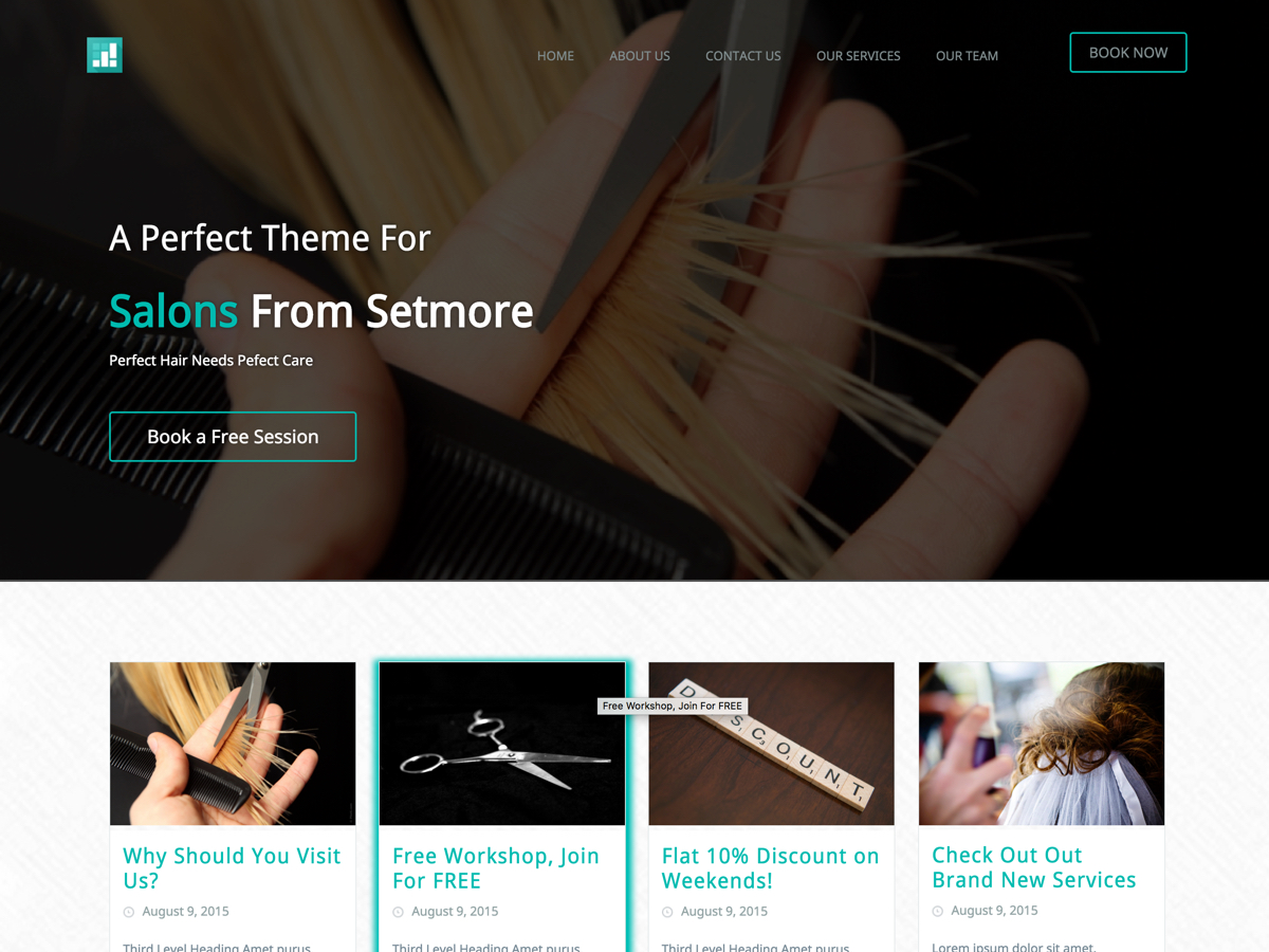 Setmore SpaSalon free wordpress theme