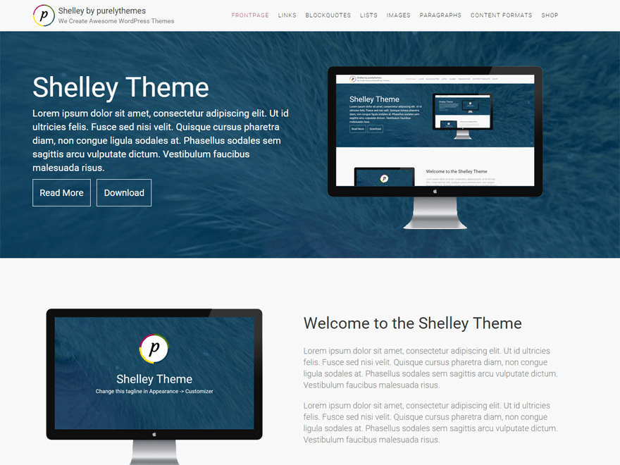 screenshot of Shelley free WooCommerce theme