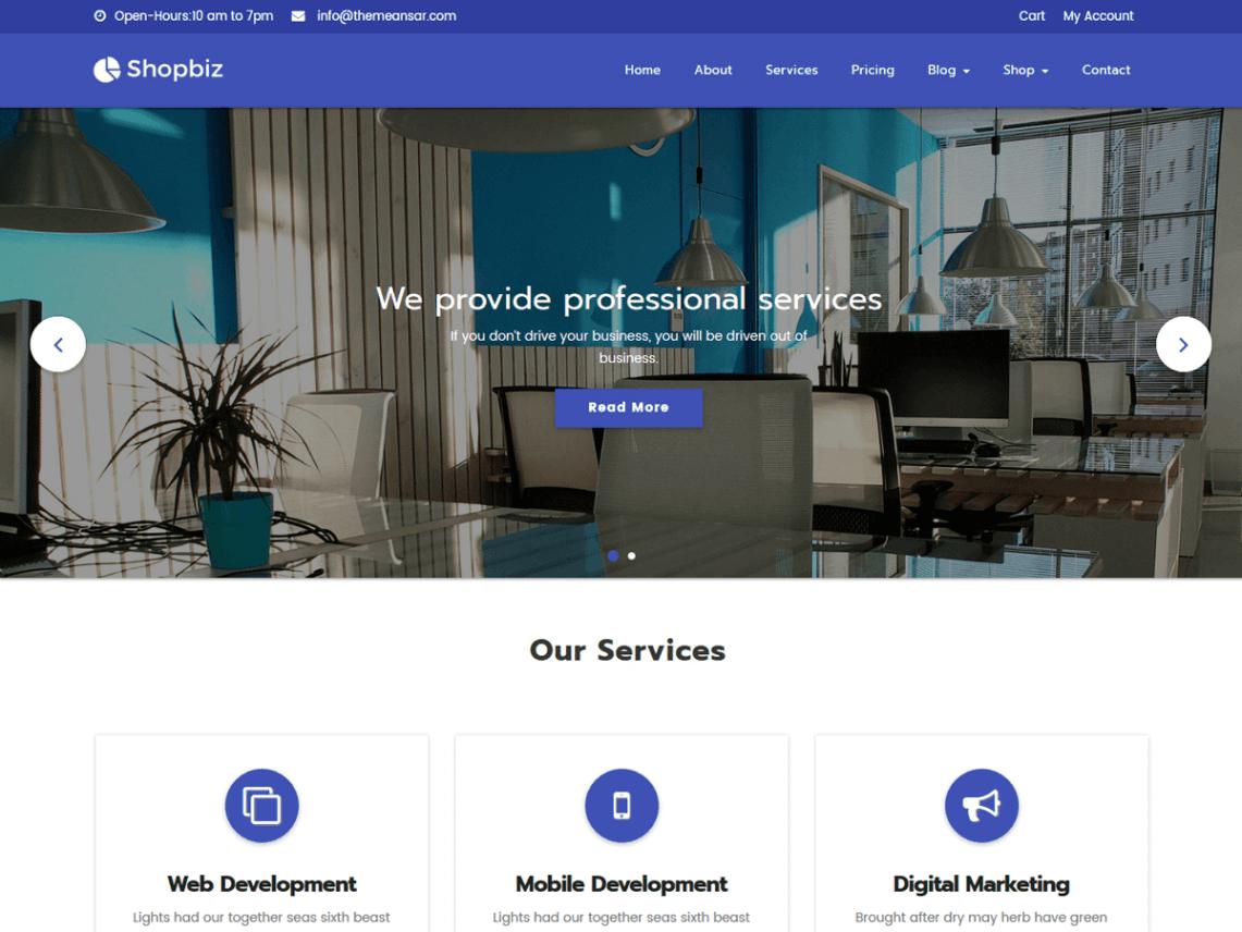 Shopbiz Lite ecommerce theme wordpress
