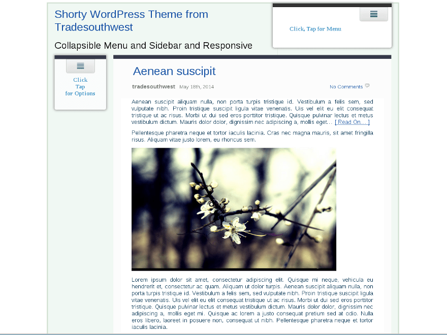 Shorty free wordpress theme