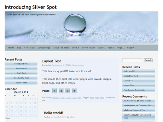 Silver Spot wordpress theme