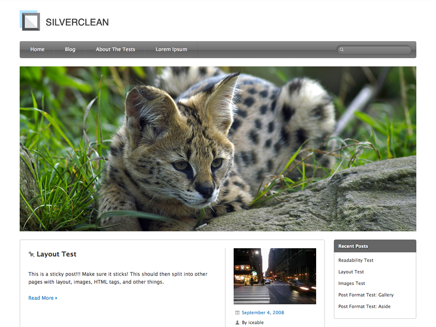 Silverclean Lite free wordpress theme