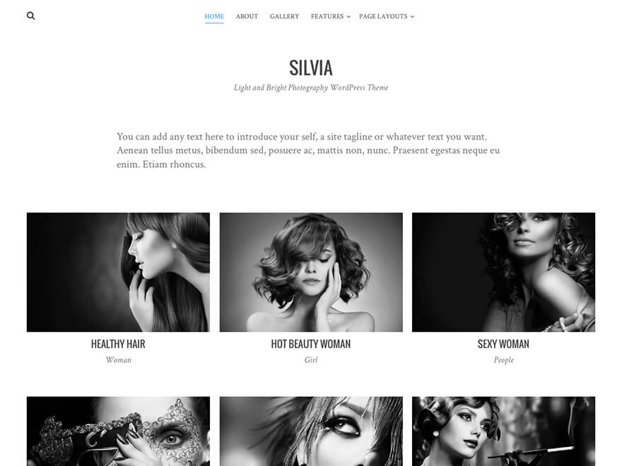 WordPress Theme Silvia