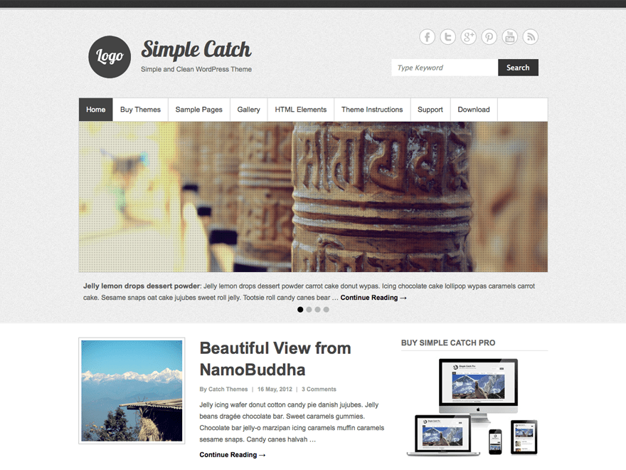 Simple Catch free wordpress theme