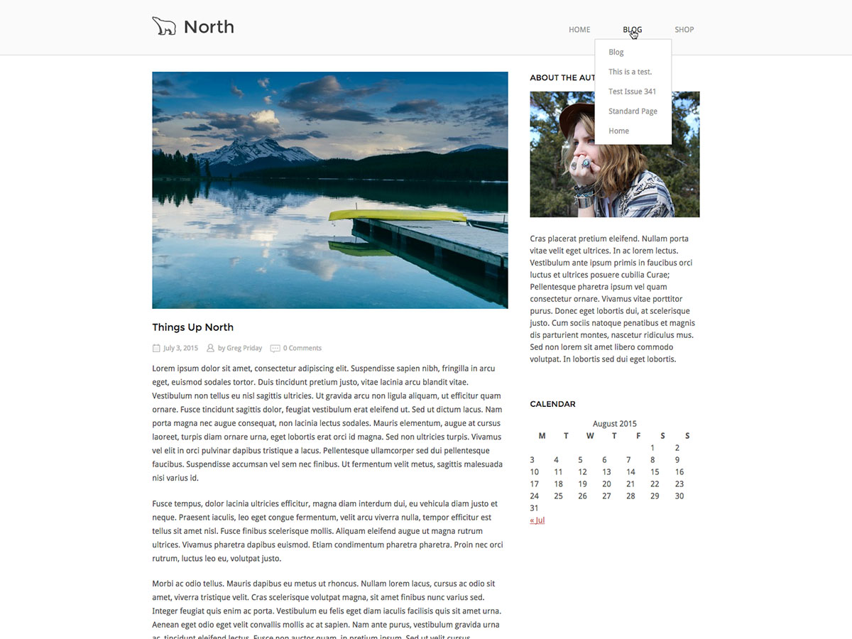 screenshot of SiteOrigin North free WooCommerce theme