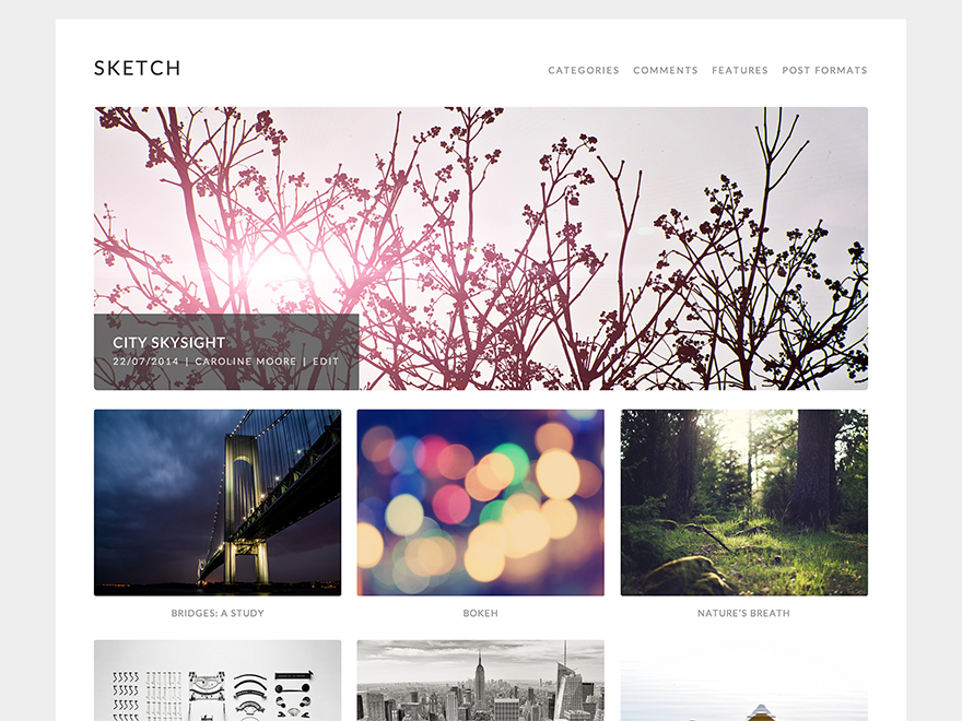 Sketch free wordpress theme