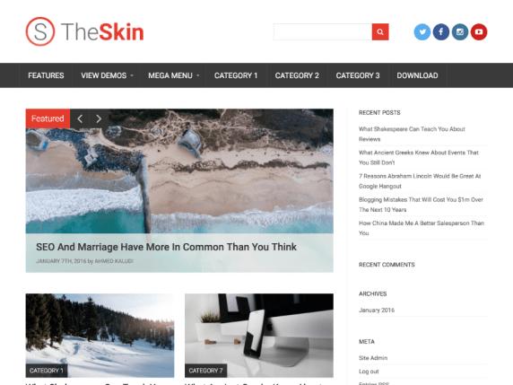 The Skin WP Theme