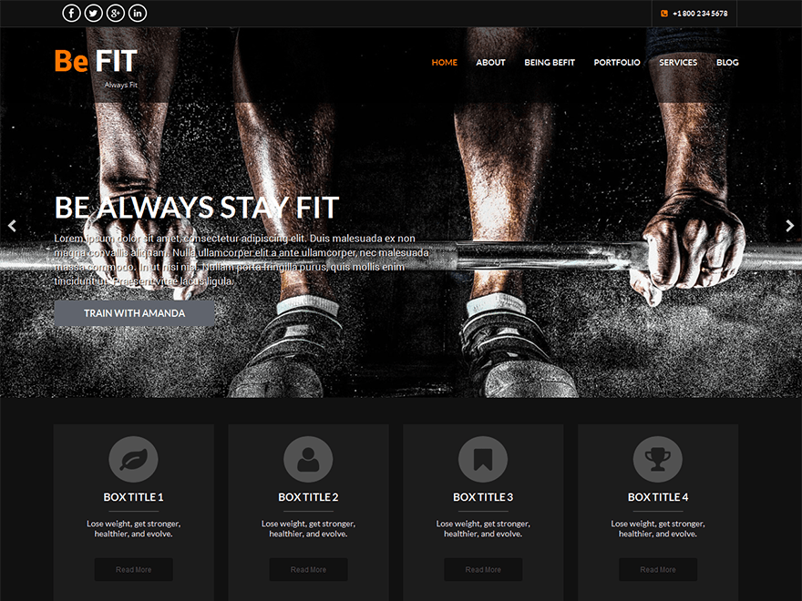 SKT BeFit free wordpress theme