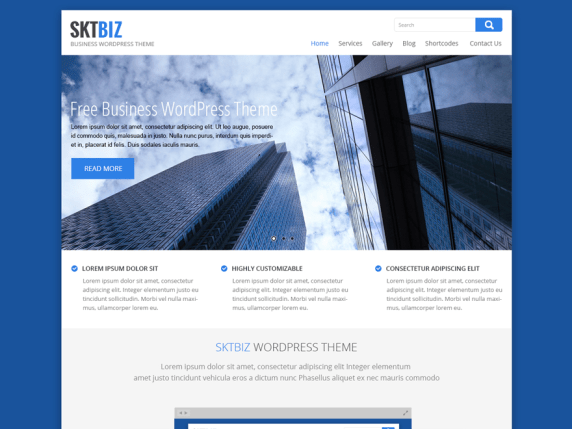 SKT Biz wordpress theme