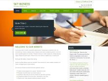 SKT Bizness