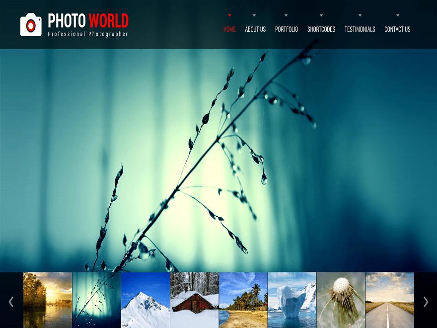 Skt Photo World wordpress theme