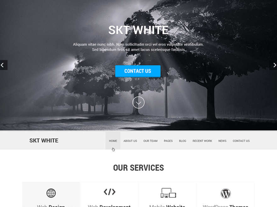 Skt White wordpress theme