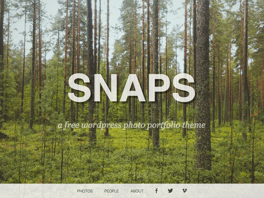 Snaps free wordpress theme
